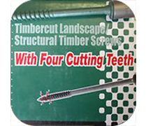 Timberfast XT Screws