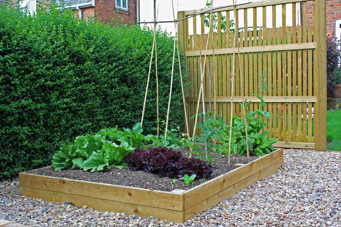 Blog hillsborough fencing sheffield for Vegetable patch ideas
