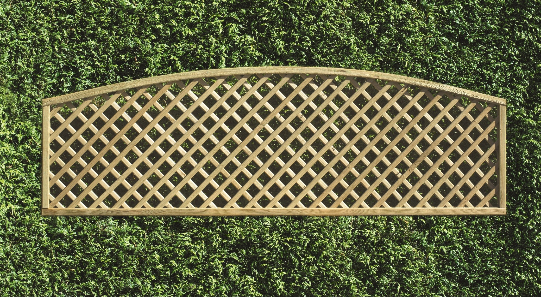 Decorative Lattice Convex