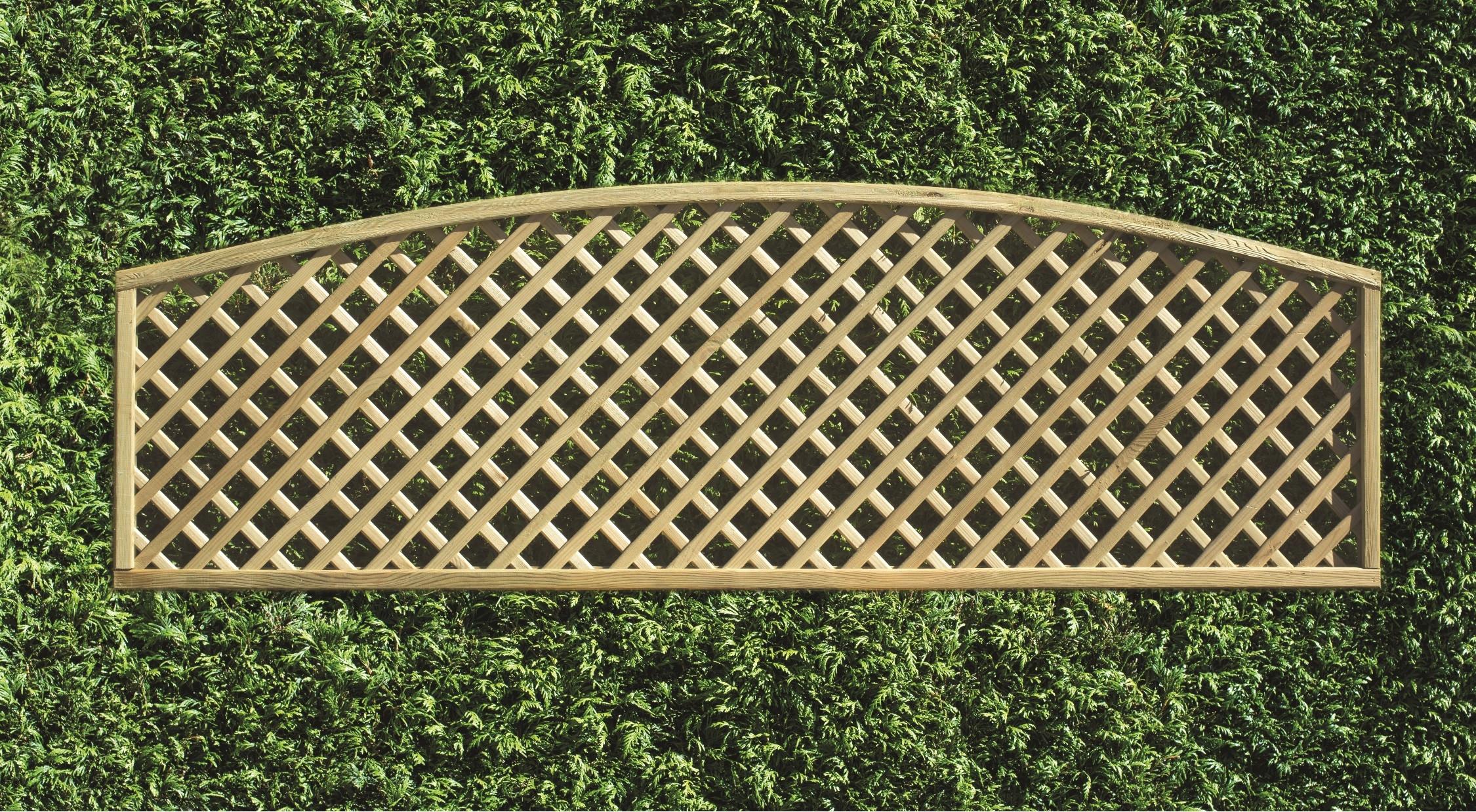 Decorative Lattice Convex