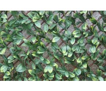 WonderWal Trellis Laurel Leaf
