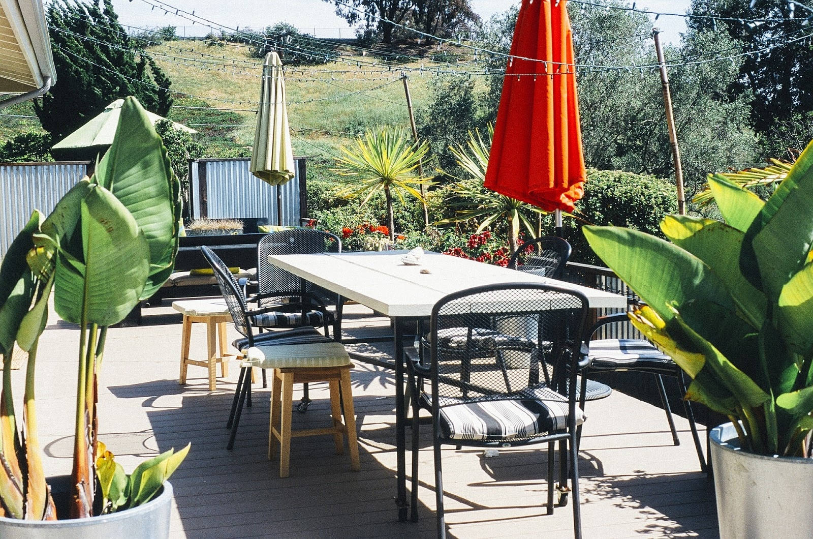 Outdoor Decking with Plants