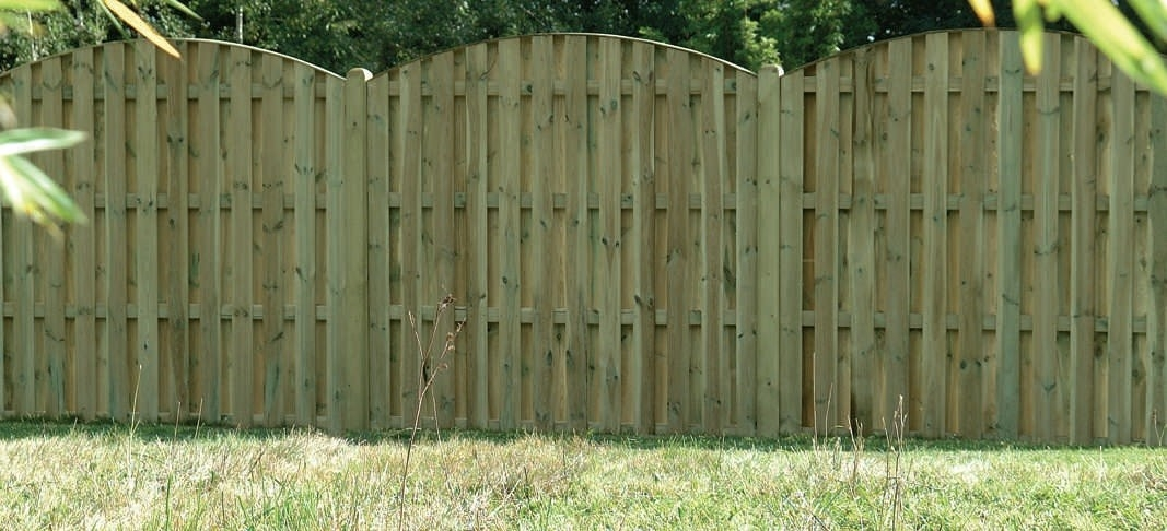 Wooden fence posts with surrounding plants