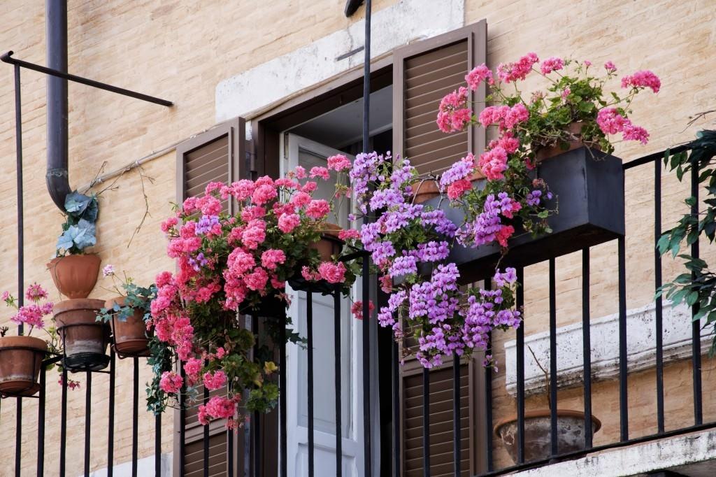 Picturesque Balconies